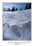 Snow Texture.jpg