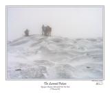 Algonquin Summit Picture.jpg