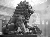 Fu Dog, Lama Temple, Beijing