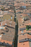 Lucca main street