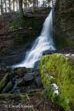 Winter at Bucktail Falls