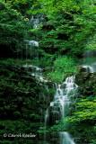 Chittenango's Other Falls