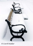 Winter Benches