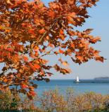 Fall at Sodus Bay