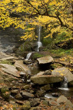 Cowshed Falls in Autumn