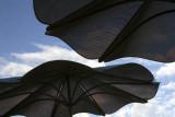 Umbrellas-Boulder Dam