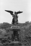 Angel of the Waters also known as Bethesda fountain