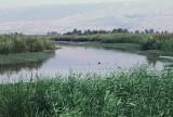 Hula Valley & Lake