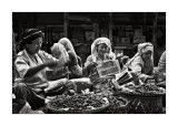 Kota Bharu Graces