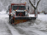plow amidst icy trees