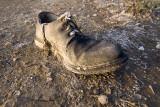 Shoe_JLB7017.jpg
