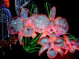 Royal Flora Expo