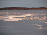 Ice floating in with the tide