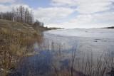 Downriver view along shoreline