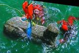 Photo d'une image extraite d'un film présentant les recherches sous-marines de l'équipe française