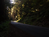 Light in the road..