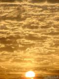(( NEW )) Egyptian Sunrise