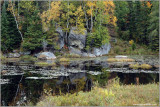 Algonquin Colours