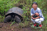 Galápagos Tortoise weighing three times as much as Lisa