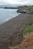 Ash beach