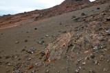 Volcanic debris
