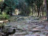 Nakasendo Highway ishidatami (stone paving)