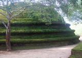 Moss-covered dagoba