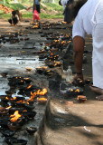Lighting oil lamps at Sri Maha Bodi