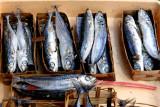 Fresh fish, beautiful packaging