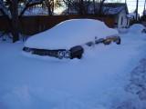Blizzard in Colorado