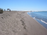 The Point - Point Pelee National Park, Leamington, Ontario