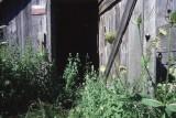 The Farm, Dunville, Ontario - 12