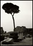 ROME - April 2007  [I]