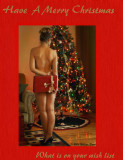Happy Christmas From Wanda and Bill 12_07_06.jpg