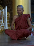 Monk, Swedagon