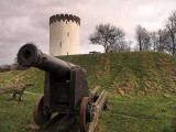 Cannon and Tower