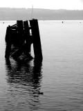 Old piers