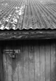Door.jpg