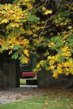 Cawdor Red Seat