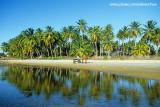 charrete na praia do Mundaú
