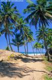 Pista de terra na Península de Maraú