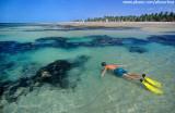 mergulho nas piscinas naturais da praia de fleixeiras2.jpg