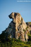 Detalhe da cabeça da Pedra da galinha choca, Quixadá