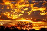 Pôr-do-sol no sertão, Quixadá 3503