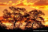 Pôr-do-sol no sertão, Quixadá 3507