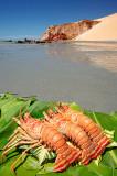 Lagostas na praia de Ponta Grossa, Icapuí_3906
