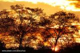 Pôr-do-sol no sertão_3501