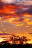 Pôr-do-sol no sertão_3516