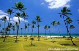 Praia Jardim de Alá, Salvador, BA