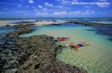mergulho nas piscinas naturais da praia das fleixeiras, Trairi.jpg